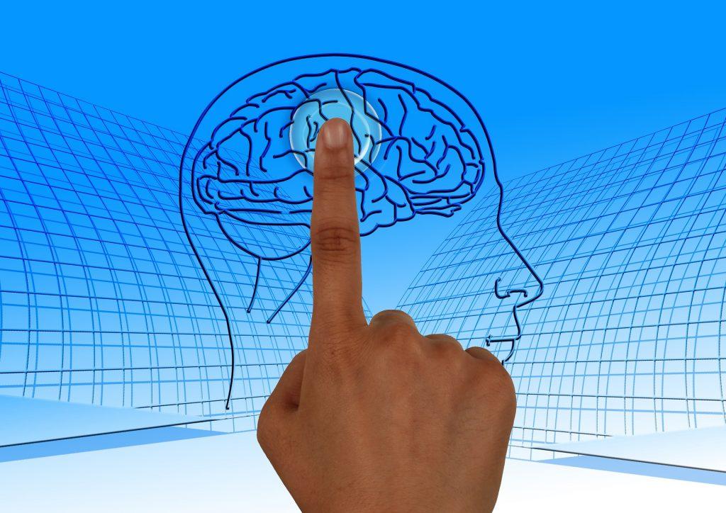 brain-770044_1920